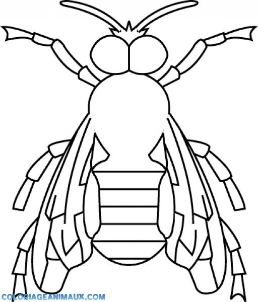 coloriage abeille assise tranquillement pour enfants