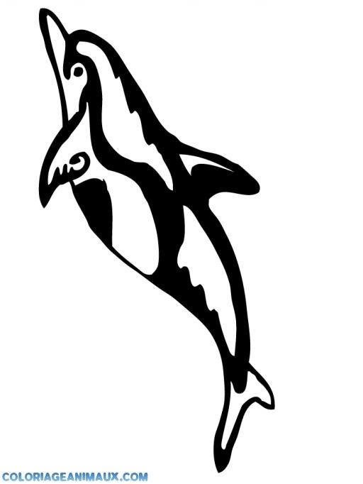 Coloriage beau dauphin dans l 39 eau imprimer - Dessin a imprimer de dauphin ...