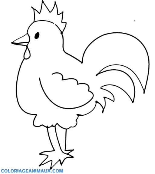 coloriage bébé poule pour enfants
