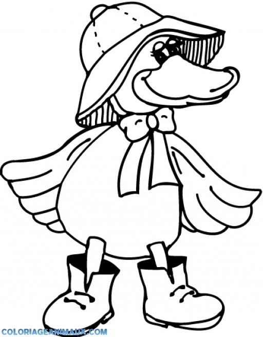 coloriage canard avec un manteau pour enfants