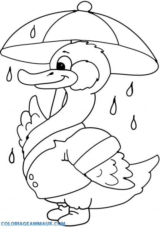 coloriage canard avec un parapluie pour enfants