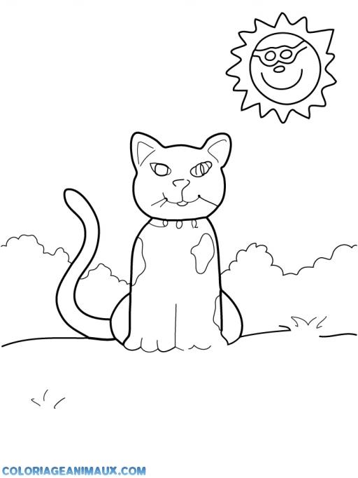 coloriage chat assis sous le soleil 224 imprimer
