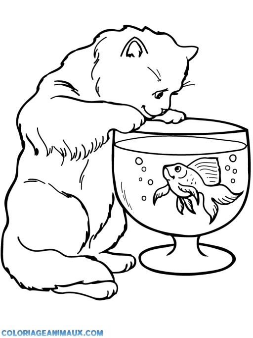 printable coloring pages of cat in the hat collections