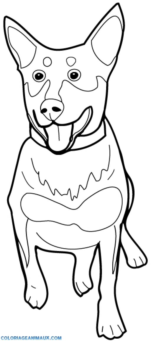 Coloriage chien qui tire la langue imprimer - Dessin de grenouille a imprimer ...