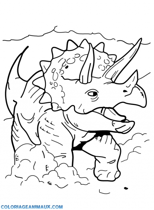 Coloriage Dinosaure Triceratops.Coloriage Dinosaure Triceratops Qui Charge A Imprimer
