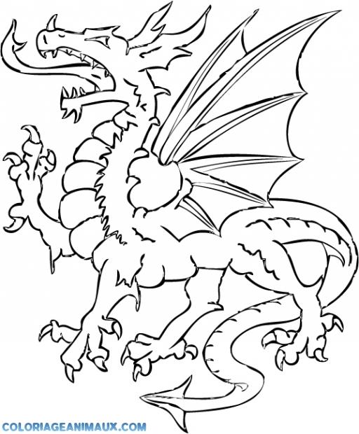 Coloriage dragon avec des ailes imprimer - Aile de dragon dessin ...