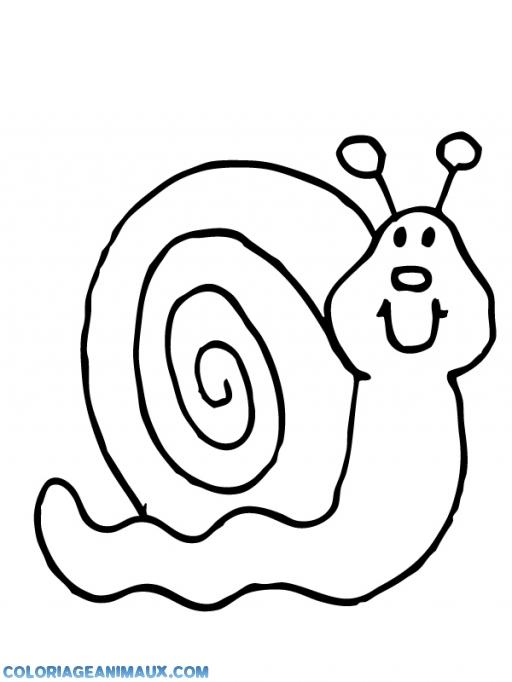 Coloriage Animaux Escargot.Coloriage Escargot Content A Imprimer