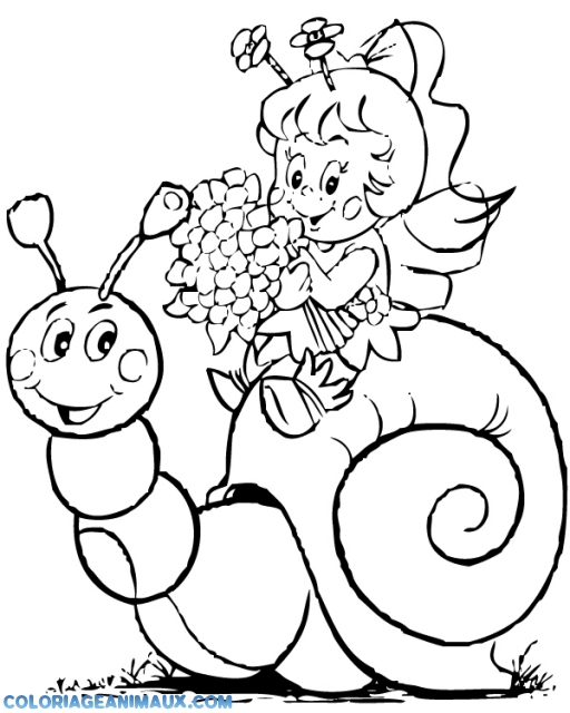 Coloriage escargot et maya l 39 abeille imprimer - Abeille coloriage ...