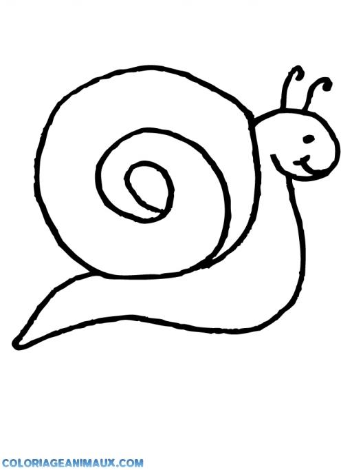 Coloriage Animaux Escargot.Coloriage Escargot Qui Avance A Imprimer