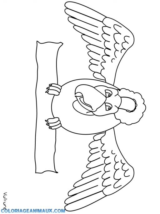 Coloriage grand oiseau sur une branche imprimer - Coloriage grand ...