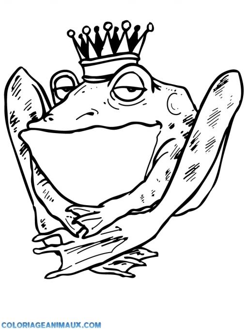 Coloriage grenouille avec sa couronne imprimer - Dessin de grenouille a imprimer ...