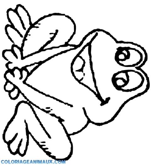 Coloriage grenouille qui attend ses copains imprimer - Coloriage de grenouille ...