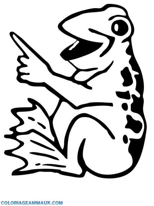 coloriage-grenouille-qui-montre-du-doigt.jpg