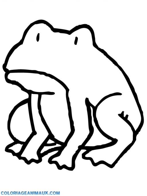 coloriage grenouille triste pour enfants
