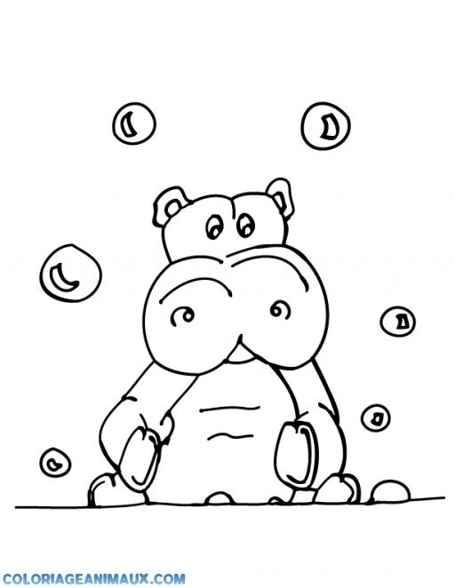 Coloriage Hippopotame Entouré De Bulles De Savon à Imprimer