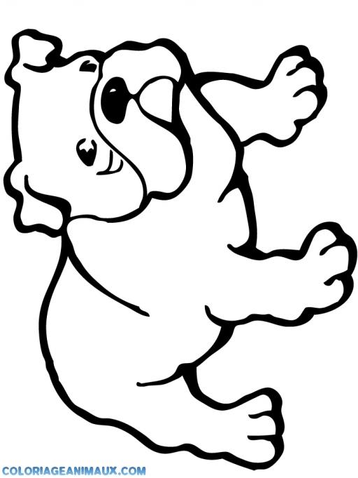 Coloriage Joli Bulldog Imprimer