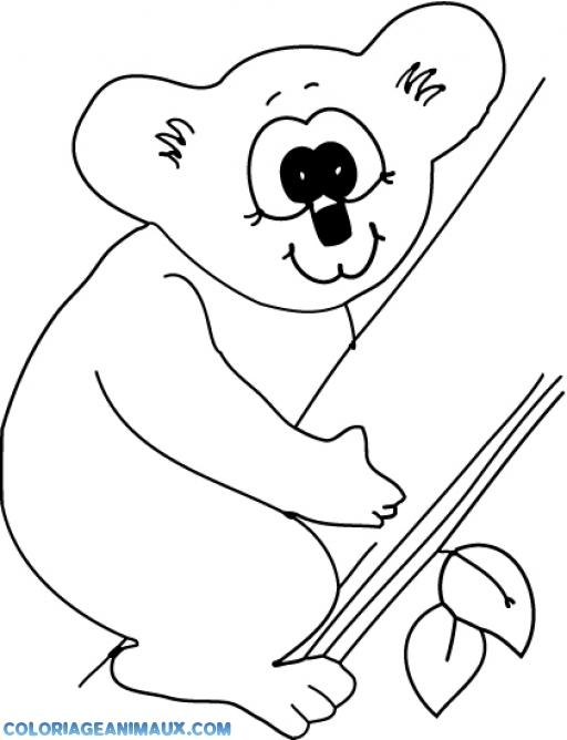 Coloriage Koala Sur Un Arbre A Imprimer
