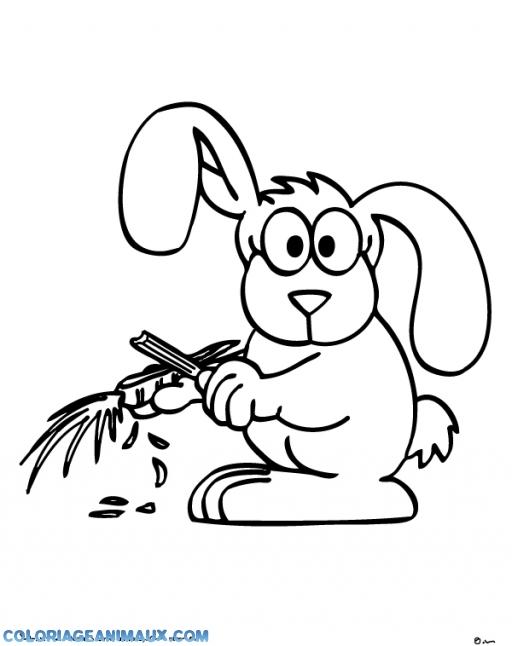 coloriage Lapin étonné pour enfants
