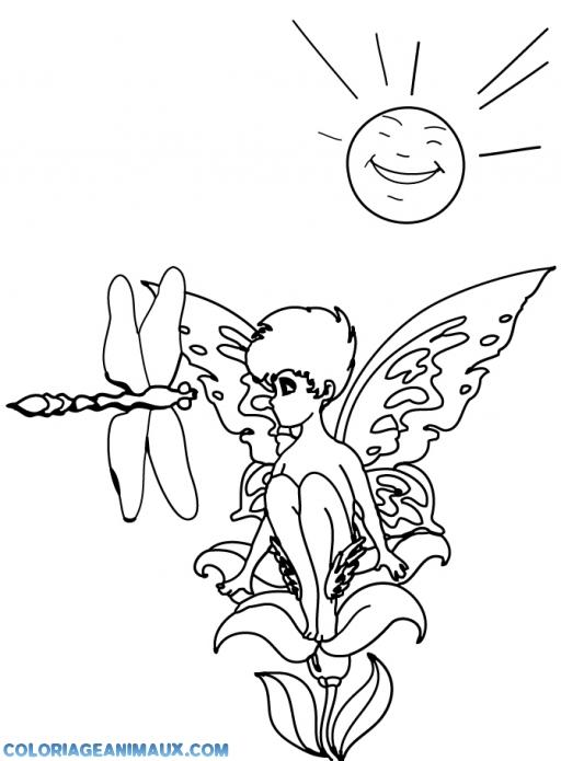 Coloriage libellule et la f e clochette imprimer - Photo de libellule a imprimer ...