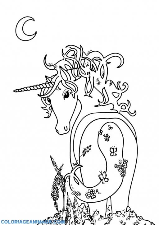 Coloriage Licorne Qui Attend La Princesse A Imprimer