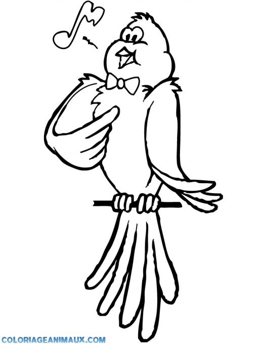 Oiseaux qui chante devine qui vient nicher chez moi 199 - Dessin oiseau qui chante ...
