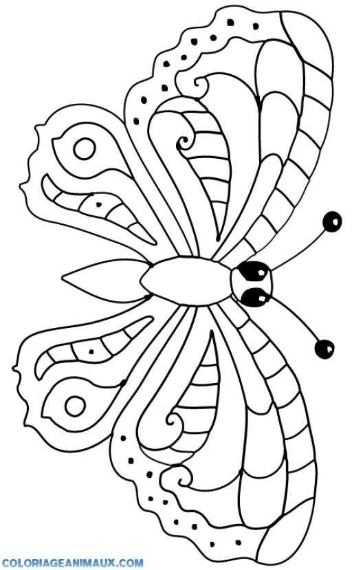 Coloriage Papillon Qui Vole A Imprimer