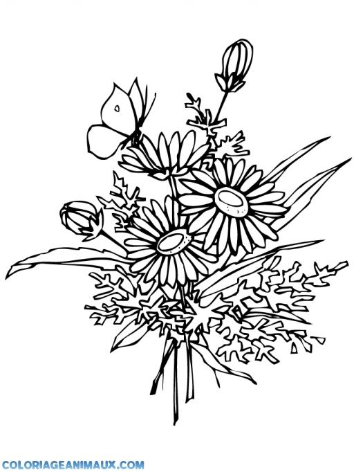 coloriage papillon sur un bouquet de fleurs pour enfants