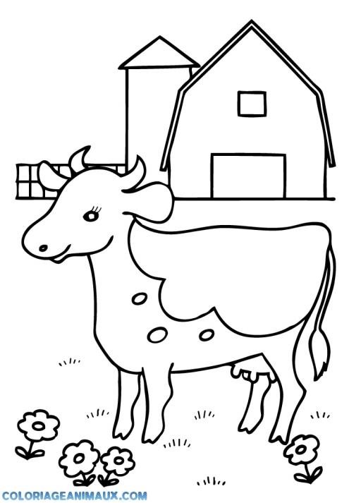 Coloriage Bebe Vache.Coloriage Petit Bebe Vache A Imprimer
