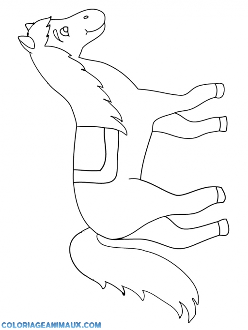 Coloriage petit cheval debout imprimer - Dessin facile de cheval ...