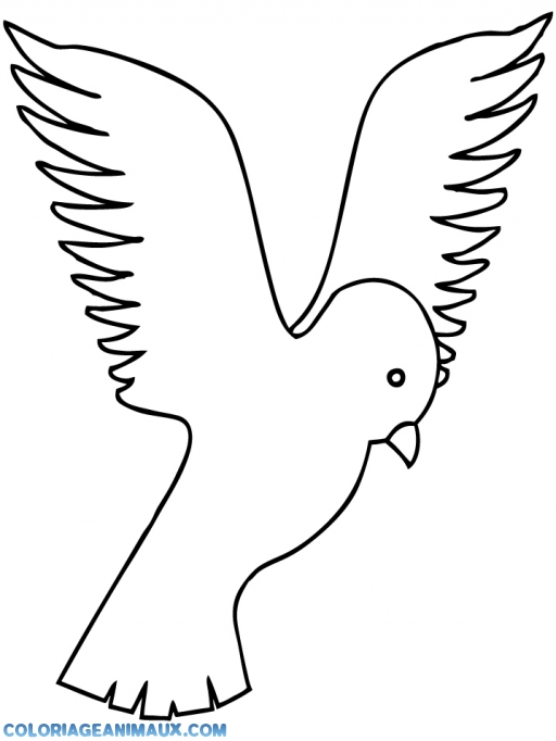 Un oiseau colouring pages for Un petit oiseau