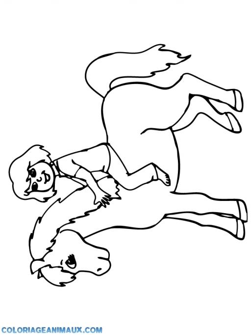 coloriage petite fille sur un cheval pour enfants