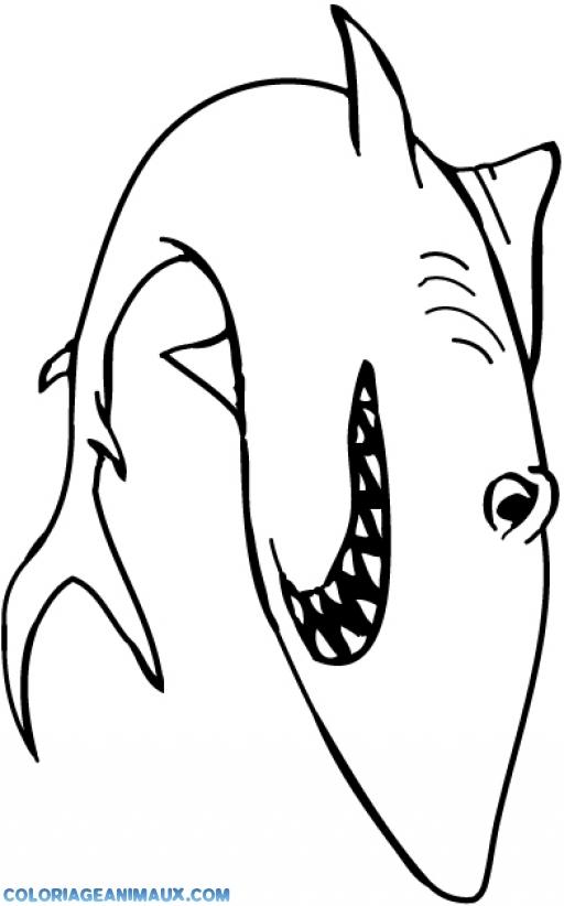 Coloriage requin nerv dans l 39 oc an imprimer - Coloriage de requin a imprimer ...