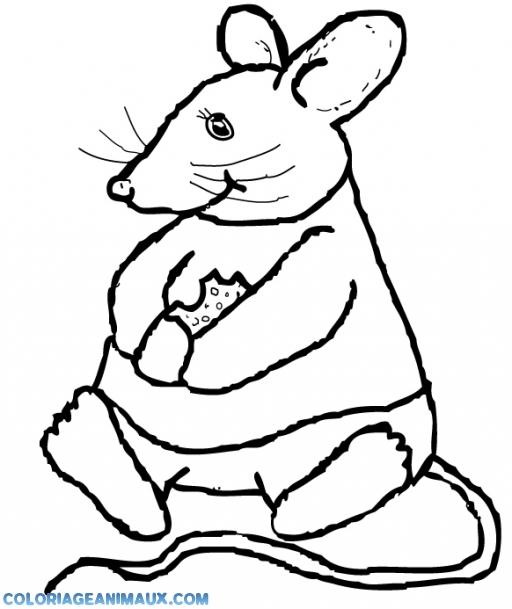coloriage souris assise pour enfants