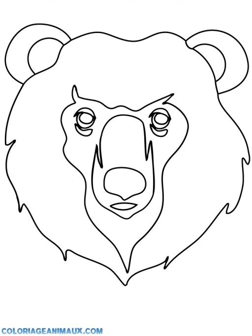 coloriage tête d'ours furieux pour enfants
