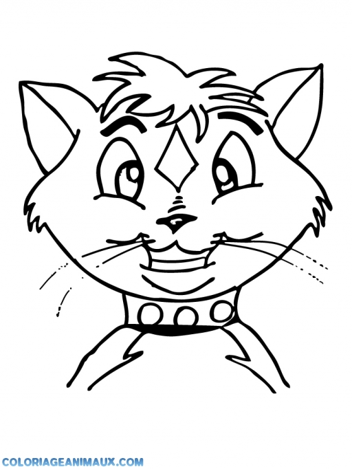 coloriage tte de chat rigolote pour enfants
