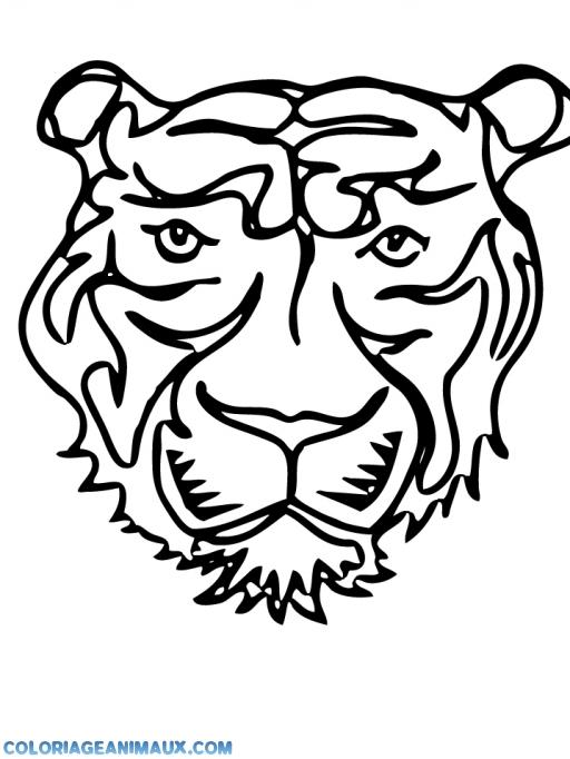 Coloriage t te de tigre imprimer - Tete de tigre dessin facile ...