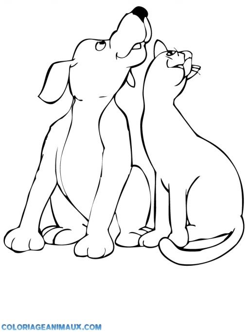 coloriage un chien et un chat ensemble pour enfants