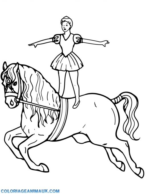 Coloriage Danseuse Cirque.Coloriage Une Danseuse Debout Sur Un Cheval A Imprimer