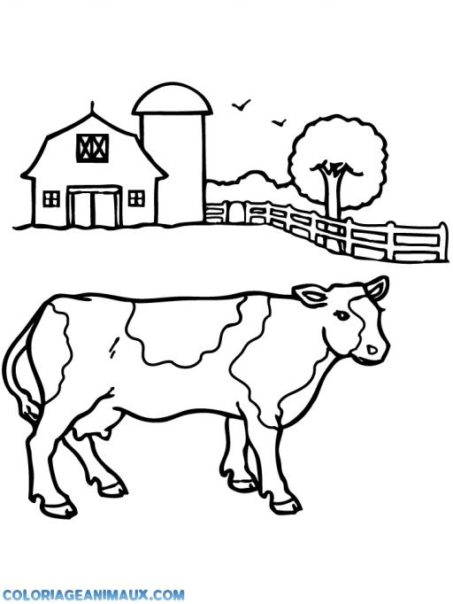Coloriage vache la ferme des