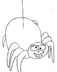 araignée pendu à son fil