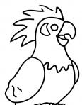 beau perroquet qui chante