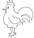 bébé poule