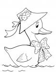 canard qui nage dans l'eau