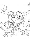 canards qui discutent
