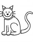 chaton rigolo