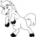 cheval debout qui sourit