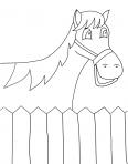 cheval souriant dans son enclos