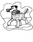 chien qui apporte le journal