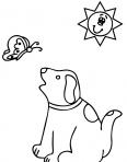 chien qui regarde un papillon dans le ciel