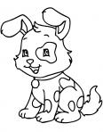 chien qui ressemble à un lapin